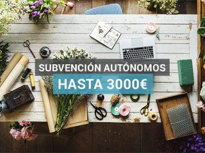 subvencion-para-autonomos
